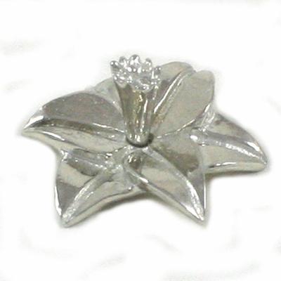 Daffodil Ringholder Symbolize Hope Poetry - Lucina K.